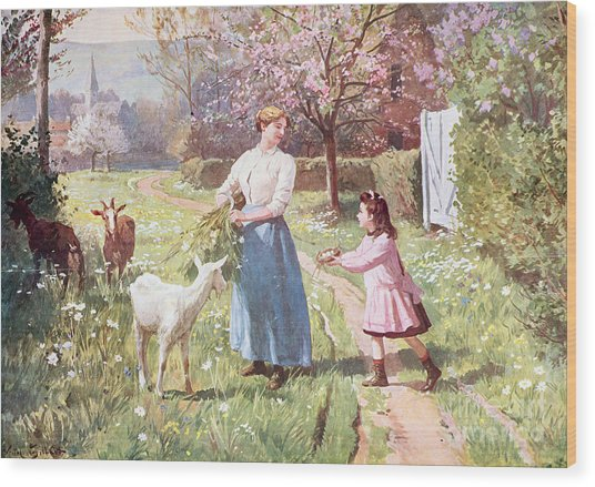 Easter Eggs In The Country Wood Print