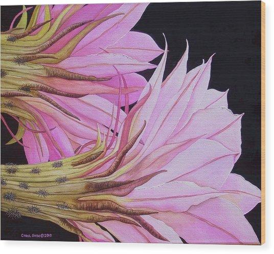 Easter Lily Cactus Flower Wood Print by Carol Sabo