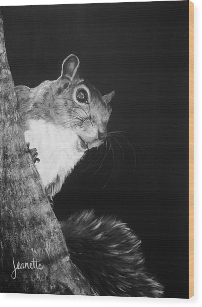 Eastern Gray Squirrel Wood Print
