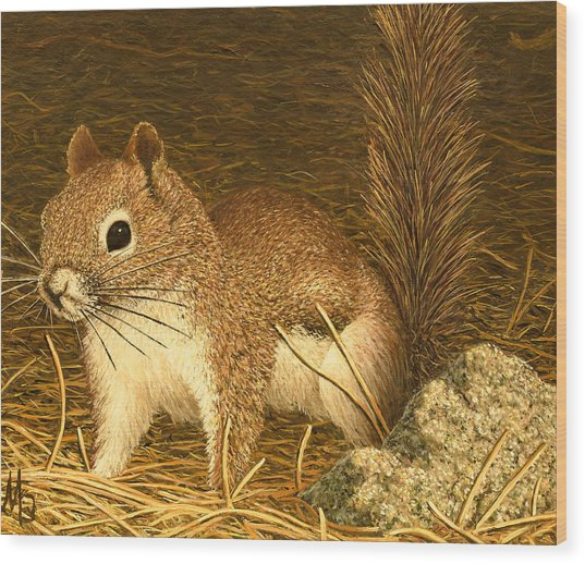 Eastern Pine Squirrel Wood Print