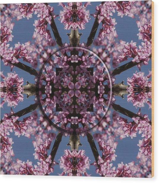Eastern Red Bud Mandala Wood Print by Alan Skonieczny