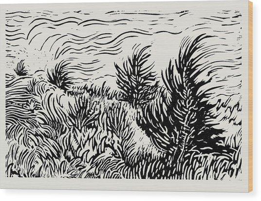 Eastern Red Cedar Wood Print