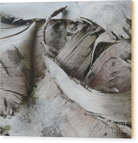 Ebb And Flow Wood Print by Donna McLarty