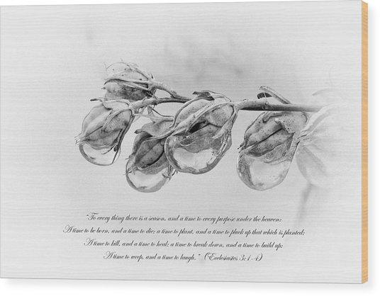 Ecclesiastes 3 Wood Print