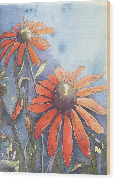 Echinacea Wood Print by Robynne Hardison