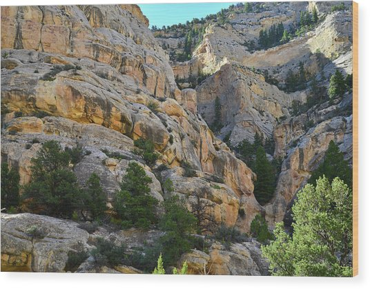 Echo Park Canyon In Dinosaur National Monument Wood Print