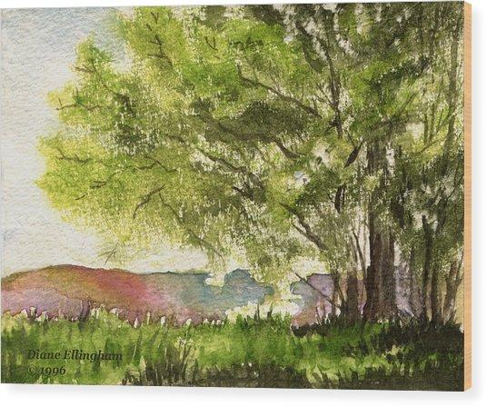 Echoes Of Summer Wood Print by Diane Ellingham