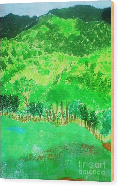 Ecuador Countryside Wood Print