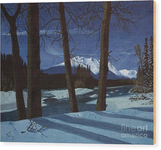 Eddy Park Moonlight Wood Print