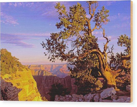 Edge Of Canyon Wood Print by Alan Lenk