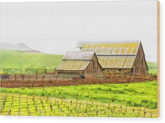 Edna Valley Ranch Wood Print by Patricia Stalter