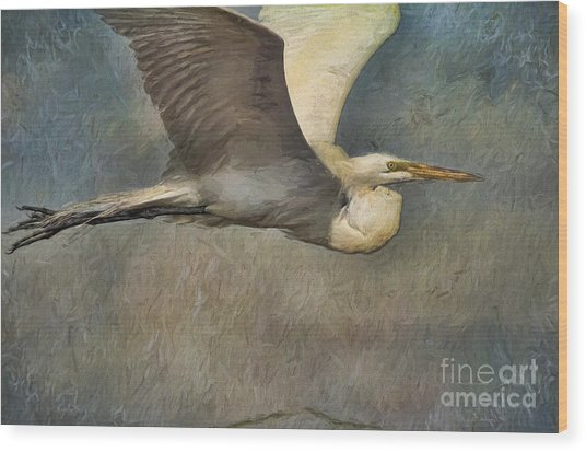 Egret Journey Wood Print