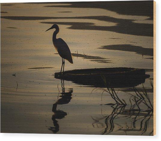 Egret On The Lake Wood Print by Dane Strom
