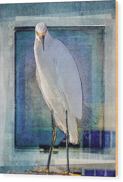 Egret Portrait Wood Print