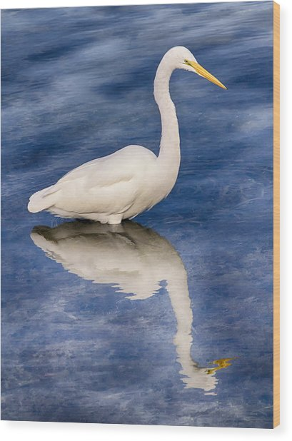 Egret Reflection On Blue Wood Print