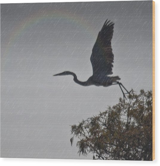 Egret Silhouette Wood Print by Bill Perry