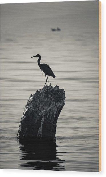 Egret Silhouette Wood Print by Dane Strom