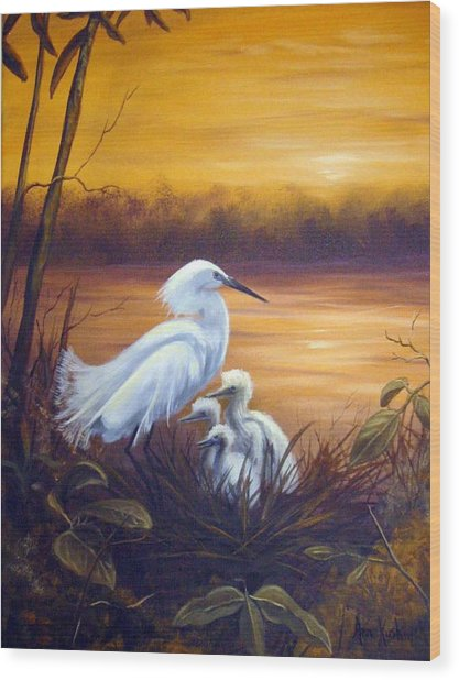 Egret With Chicks Wood Print