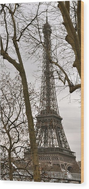 Eiffel Tower Through Branches Wood Print