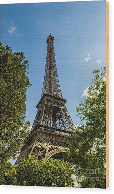 Eiffel Tower Through Trees Wood Print