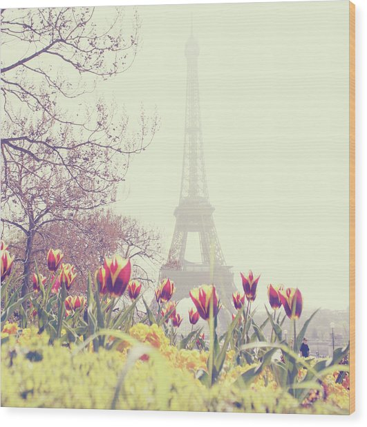 Eiffel Tower With Tulips Wood Print