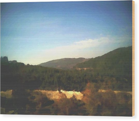 Ein-kerem Valley Wood Print