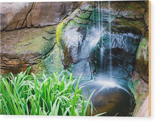 El Paso Zoo Waterfall Long Exposure Wood Print