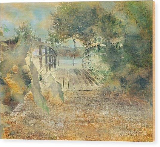 El Puente De Laxe Wood Print