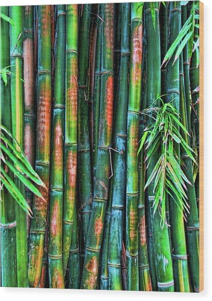 Electric Bamboo 6 Wood Print
