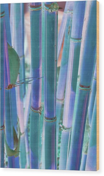 Electric Bamboo 8 Wood Print
