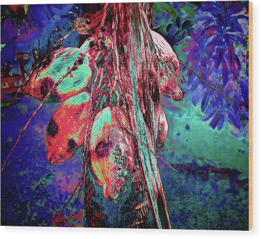 Electric Coconut 1 Wood Print