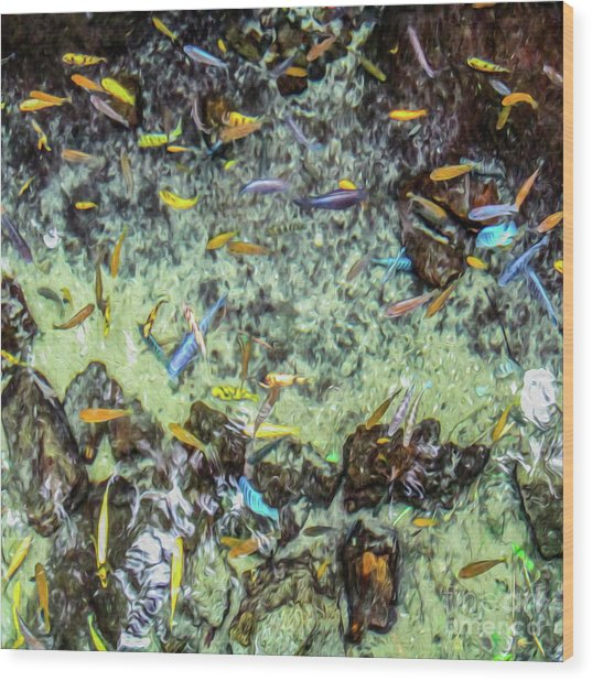 Electric Fish In The Pond Wood Print