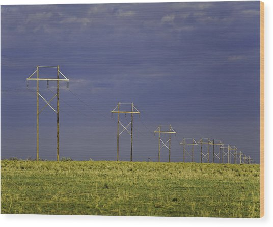 Electric Pasture Wood Print
