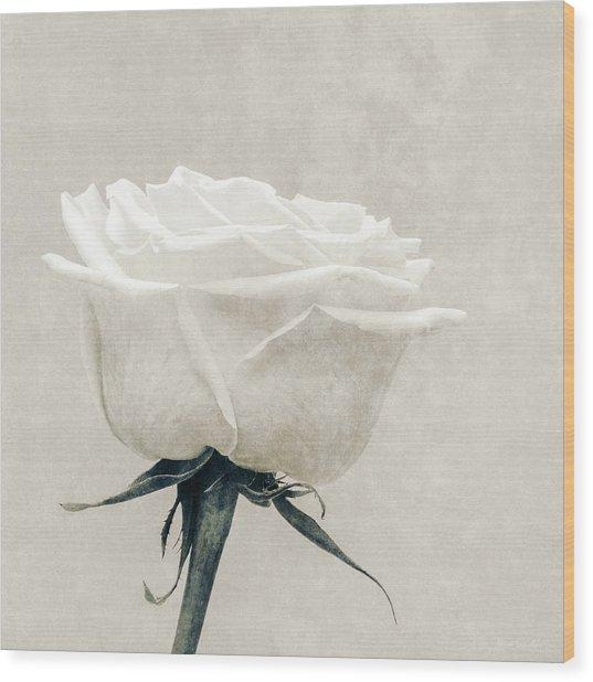 Elegance In White Wood Print