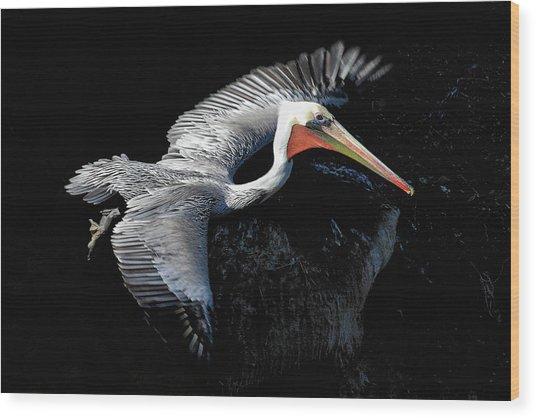 Elegant Flight Wood Print