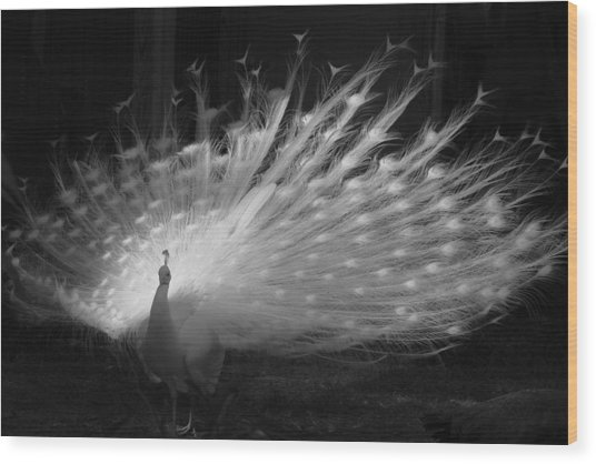 Elegant In White Wood Print