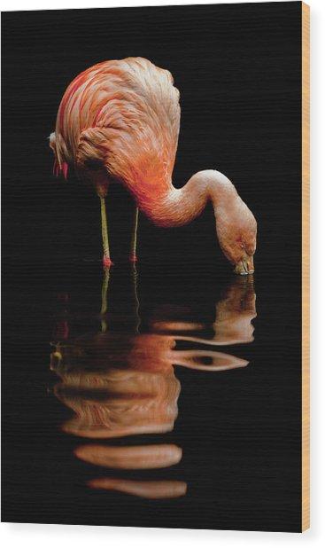 Elegant Reflection Wood Print by Barb Leopold