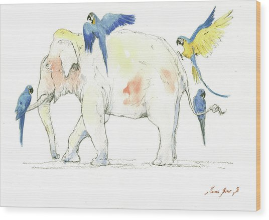 Elephant And Parrots Wood Print