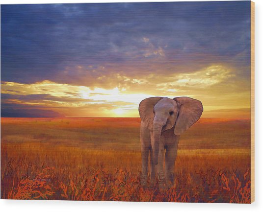 Wood Print featuring the painting Elephant Baby by Valerie Anne Kelly