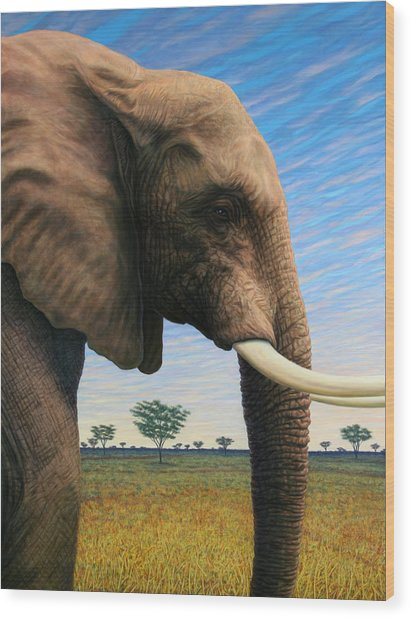 Elephant On Safari Wood Print