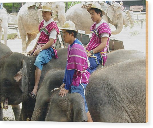 Elephant Riders Wood Print by Sue Ann Rybarczyk