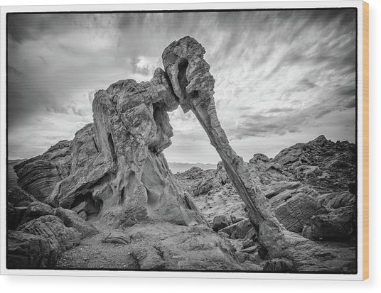 Elephant Rock, Valley Of Fire Wood Print
