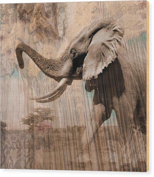 Elephant Visions Wall Art Wood Print