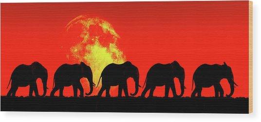 Elephants Walk In The Red Sky Wood Print
