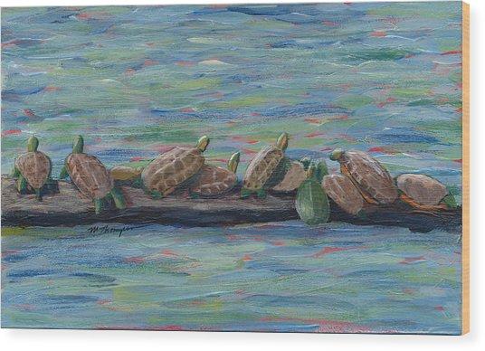 Eleven Turtles Wood Print