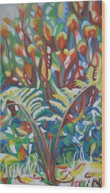 Elguin Wood Print