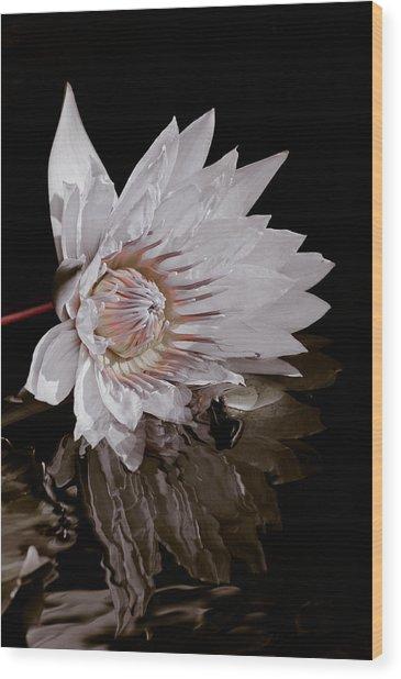 Elizabeth's Lily Wood Print
