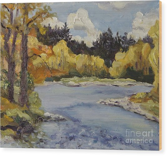 Elk River Fall Steamboat Springs Colorado Wood Print by Zanobia Shalks
