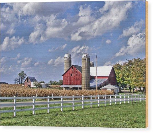 Elkhart County Farm Wood Print