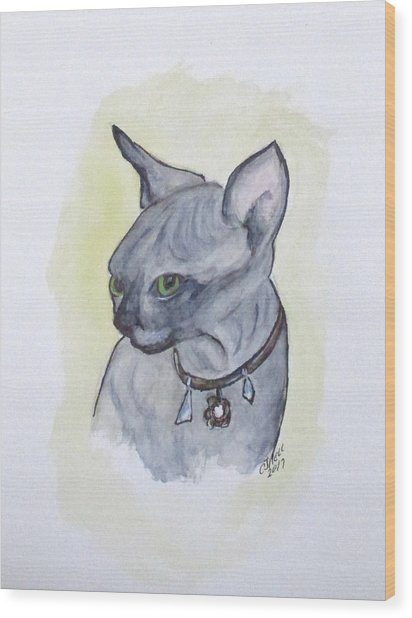 Else The Sphynx Kitten Wood Print